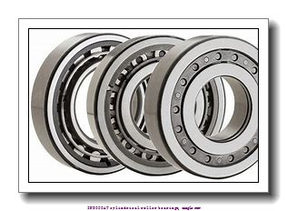 80 mm x 125 mm x 22 mm  skf NU 1016 ECM/C3VL0241 INSOCOAT cylindrical roller bearings, single row