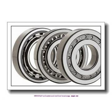 80 mm x 170 mm x 39 mm  skf NU 316 ECM/C3VL0241 INSOCOAT cylindrical roller bearings, single row