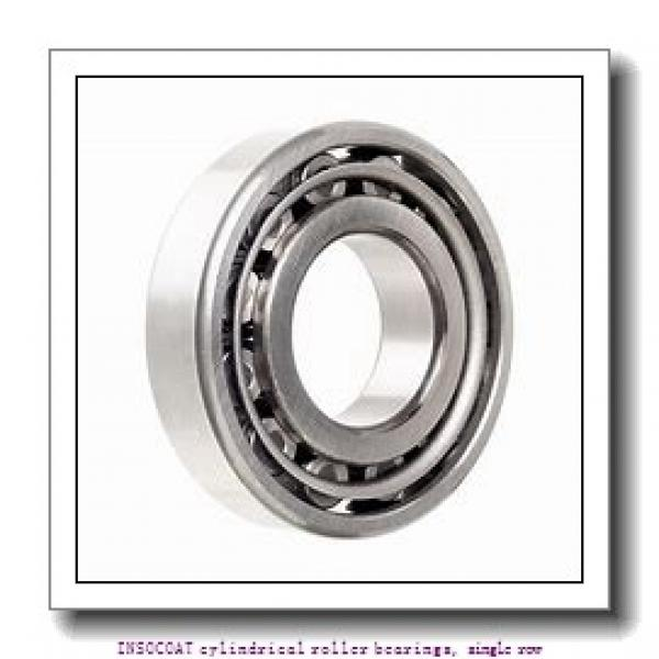 75 mm x 130 mm x 25 mm  skf NU 215 ECM/C3VL0241 INSOCOAT cylindrical roller bearings, single row #1 image