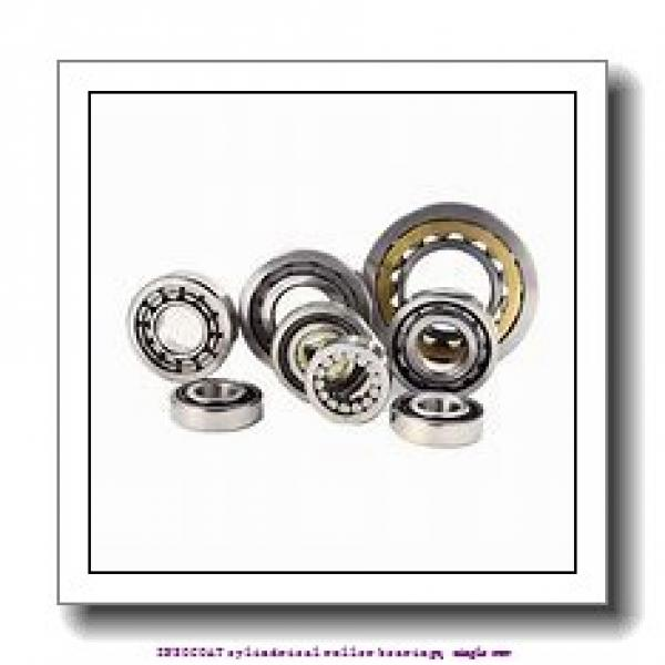 70 mm x 110 mm x 20 mm  skf NU 1014 ECP/C3VL0241 INSOCOAT cylindrical roller bearings, single row #1 image