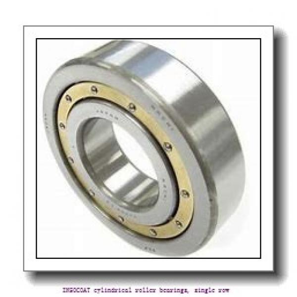 65 mm x 120 mm x 23 mm  skf NU 213 ECM/C3VL0241 INSOCOAT cylindrical roller bearings, single row #1 image