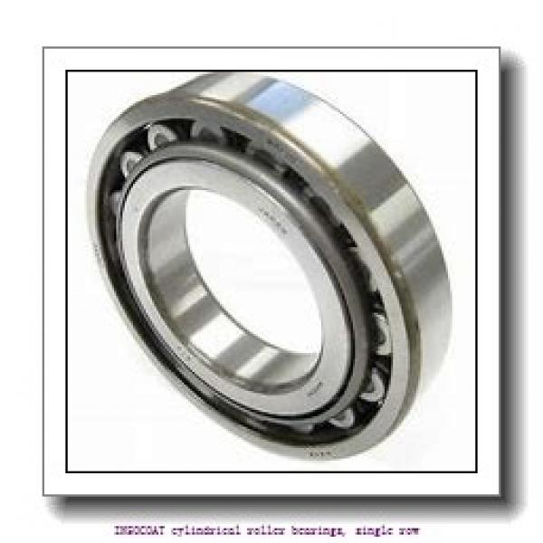 65 mm x 100 mm x 18 mm  skf NU 1013 ECP/C3VL0241 INSOCOAT cylindrical roller bearings, single row #1 image
